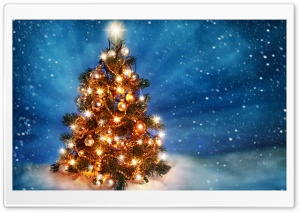 Christmas Tree 2015 HD Wide Wallpaper for Widescreen
