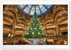Christmas Tree in Paris HD Wide Wallpaper for 4K UHD Widescreen desktop & smartphone