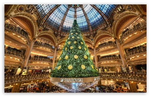 Christmas Tree in Paris ❤ 4K UHD Wallpaper for Wide 16:10 5:3 Widescreen WHXGA WQXGA WUXGA WXGA WGA ; 4K UHD 16:9 Ultra High Definition 2160p 1440p 1080p 900p 720p ; UHD 16:9 2160p 1440p 1080p 900p 720p ; Standard 4:3 5:4 3:2 Fullscreen UXGA XGA SVGA QSXGA SXGA DVGA HVGA HQVGA ( Apple PowerBook G4 iPhone 4 3G 3GS iPod Touch ) ; Tablet 1:1 ; iPad 1/2/Mini ; Mobile 4:3 5:3 3:2 16:9 5:4 - UXGA XGA SVGA WGA DVGA HVGA HQVGA ( Apple PowerBook G4 iPhone 4 3G 3GS iPod Touch ) 2160p 1440p 1080p 900p 720p QSXGA SXGA ;