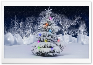 Christmas Tree, Outdoor HD Wide Wallpaper for Widescreen