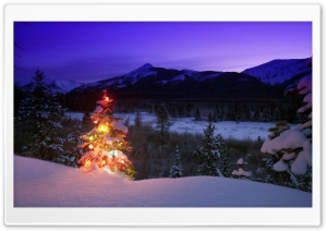 Christmas Tree With Lights Outdoors In The Mountains HD Wide Wallpaper for 4K UHD Widescreen desktop & smartphone