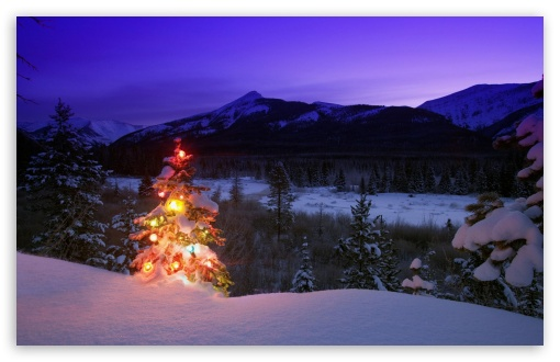Christmas Tree With Lights Outdoors In The Mountains UltraHD Wallpaper for Wide 16:10 5:3 Widescreen WHXGA WQXGA WUXGA WXGA WGA ; 8K UHD TV 16:9 Ultra High Definition 2160p 1440p 1080p 900p 720p ; Standard 4:3 5:4 3:2 Fullscreen UXGA XGA SVGA QSXGA SXGA DVGA HVGA HQVGA ( Apple PowerBook G4 iPhone 4 3G 3GS iPod Touch ) ; Tablet 1:1 ; iPad 1/2/Mini ; Mobile 4:3 5:3 3:2 16:9 5:4 - UXGA XGA SVGA WGA DVGA HVGA HQVGA ( Apple PowerBook G4 iPhone 4 3G 3GS iPod Touch ) 2160p 1440p 1080p 900p 720p QSXGA SXGA ;