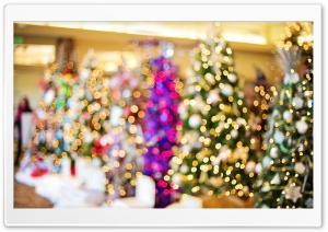 Christmas Trees Bokeh HD Wide Wallpaper for Widescreen