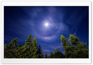Cirrostratus Cloud at night causing a Moon Halo HD Wide Wallpaper for Widescreen