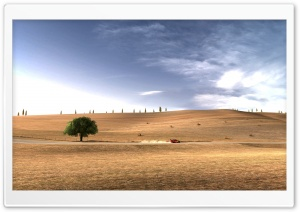 Citroen C4 WRC Desert Rally HD Wide Wallpaper for Widescreen