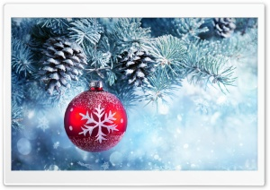 Classic Christmas Tree HD Wide Wallpaper for Widescreen