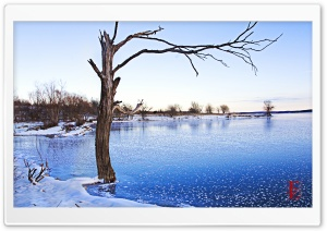 Clinton Lake Frozen HD Wide Wallpaper for Widescreen