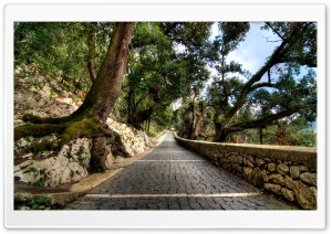 Cobblestone Path HD Wide Wallpaper for Widescreen