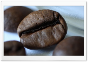 Coffee HD Wide Wallpaper for Widescreen