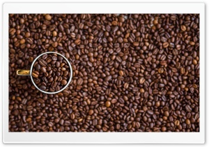 Coffee Beans HD Wide Wallpaper for Widescreen