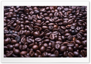 Coffee Beans HD Wide Wallpaper for 4K UHD Widescreen desktop & smartphone