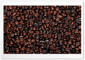 Coffee Beans Dark HD Wide Wallpaper for Widescreen