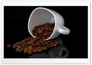 Coffee Cup HD Wide Wallpaper for Widescreen