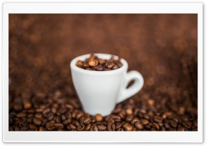 Coffee Macro HD Wide Wallpaper for Widescreen