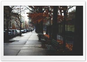 Cold Autumn Day In New York City HD Wide Wallpaper for 4K UHD Widescreen desktop & smartphone