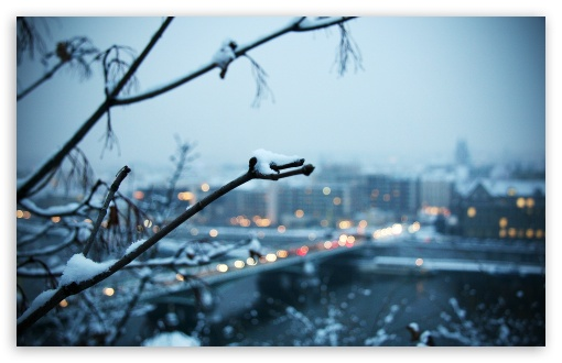 Cold Evening HD wallpaper for Standard 4:3 5:4 Fullscreen UXGA XGA SVGA QSXGA SXGA ; Wide 16:10 5:3 Widescreen WHXGA WQXGA WUXGA WXGA WGA ; HD 16:9 High Definition WQHD QWXGA 1080p 900p 720p QHD nHD ; Other 3:2 DVGA HVGA HQVGA devices ( Apple PowerBook G4 iPhone 4 3G 3GS iPod Touch ) ; Mobile VGA WVGA iPhone iPad PSP Phone - VGA QVGA Smartphone ( PocketPC GPS iPod Zune BlackBerry HTC Samsung LG Nokia Eten Asus ) WVGA WQVGA Smartphone ( HTC Samsung Sony Ericsson LG Vertu MIO ) HVGA Smartphone ( Apple iPhone iPod BlackBerry HTC Samsung Nokia ) Sony PSP Zune HD Zen ; Tablet 2 ;