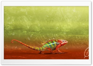 Colorful Chameleon HD Wide Wallpaper for Widescreen