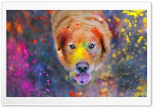 Colorful Dust HD Wide Wallpaper for Widescreen