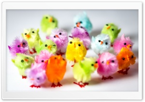 Colorful Easter Chicks HD Wide Wallpaper for 4K UHD Widescreen desktop & smartphone