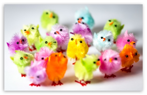 Colorful Easter Chicks ❤ 4K UHD Wallpaper for Wide 16:10 5:3 Widescreen WHXGA WQXGA WUXGA WXGA WGA ; UltraWide 21:9 24:10 ; 4K UHD 16:9 Ultra High Definition 2160p 1440p 1080p 900p 720p ; UHD 16:9 2160p 1440p 1080p 900p 720p ; Standard 4:3 3:2 Fullscreen UXGA XGA SVGA DVGA HVGA HQVGA ( Apple PowerBook G4 iPhone 4 3G 3GS iPod Touch ) ; Smartphone 16:9 3:2 5:3 2160p 1440p 1080p 900p 720p DVGA HVGA HQVGA ( Apple PowerBook G4 iPhone 4 3G 3GS iPod Touch ) WGA ; Tablet 1:1 ; iPad 1/2/Mini ; Mobile 4:3 5:3 3:2 16:9 5:4 - UXGA XGA SVGA WGA DVGA HVGA HQVGA ( Apple PowerBook G4 iPhone 4 3G 3GS iPod Touch ) 2160p 1440p 1080p 900p 720p QSXGA SXGA ;