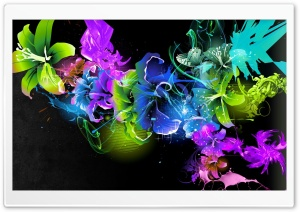 Colorful Lilies HD Wide Wallpaper for Widescreen