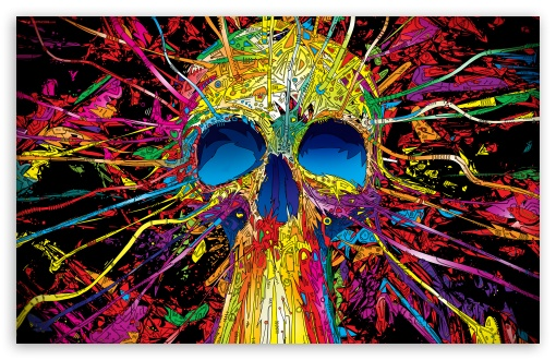 Download Colorful Skull UltraHD Wallpaper