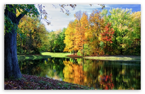 Colorful Trees Reflections HD wallpaper for Wide 16:10 5:3 Widescreen WHXGA WQXGA WUXGA WXGA WGA ; HD 16:9 High Definition WQHD QWXGA 1080p 900p 720p QHD nHD ; UHD 16:9 WQHD QWXGA 1080p 900p 720p QHD nHD ; Standard 4:3 5:4 3:2 Fullscreen UXGA XGA SVGA QSXGA SXGA DVGA HVGA HQVGA devices ( Apple PowerBook G4 iPhone 4 3G 3GS iPod Touch ) ; Tablet 1:1 ; iPad 1/2/Mini ; Mobile 4:3 5:3 3:2 16:9 5:4 - UXGA XGA SVGA WGA DVGA HVGA HQVGA devices ( Apple PowerBook G4 iPhone 4 3G 3GS iPod Touch ) WQHD QWXGA 1080p 900p 720p QHD nHD QSXGA SXGA ; Dual 16:10 5:3 4:3 5:4 WHXGA WQXGA WUXGA WXGA WGA UXGA XGA SVGA QSXGA SXGA ;