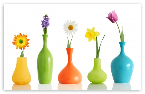 Colorul Flower Vases HD wallpaper for Wide 16:10 5:3 Widescreen WHXGA WQXGA WUXGA WXGA WGA ; HD 16:9 High Definition WQHD QWXGA 1080p 900p 720p QHD nHD ; Standard 5:4 3:2 Fullscreen QSXGA SXGA DVGA HVGA HQVGA devices ( Apple PowerBook G4 iPhone 4 3G 3GS iPod Touch ) ; Mobile 5:3 3:2 16:9 5:4 - WGA DVGA HVGA HQVGA devices ( Apple PowerBook G4 iPhone 4 3G 3GS iPod Touch ) WQHD QWXGA 1080p 900p 720p QHD nHD QSXGA SXGA ;