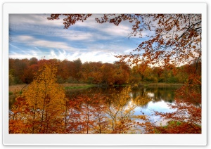 Colourful Autumn Forest Reflecting In Calm Lake HD Wide Wallpaper for 4K UHD Widescreen desktop & smartphone