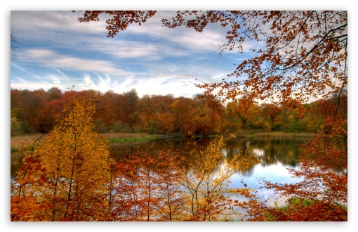 Colourful Autumn Forest Reflecting In Calm Lake HD wallpaper for Wide 16:10 5:3 Widescreen WHXGA WQXGA WUXGA WXGA WGA ; HD 16:9 High Definition WQHD QWXGA 1080p 900p 720p QHD nHD ; Standard 4:3 5:4 3:2 Fullscreen UXGA XGA SVGA QSXGA SXGA DVGA HVGA HQVGA devices ( Apple PowerBook G4 iPhone 4 3G 3GS iPod Touch ) ; Tablet 1:1 ; iPad 1/2/Mini ; Mobile 4:3 5:3 3:2 16:9 5:4 - UXGA XGA SVGA WGA DVGA HVGA HQVGA devices ( Apple PowerBook G4 iPhone 4 3G 3GS iPod Touch ) WQHD QWXGA 1080p 900p 720p QHD nHD QSXGA SXGA ; Dual 4:3 5:4 UXGA XGA SVGA QSXGA SXGA ;