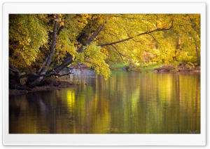 Colourful Water HD Wide Wallpaper for Widescreen