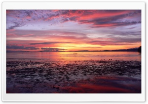Comox Sunrise HD Wide Wallpaper for Widescreen