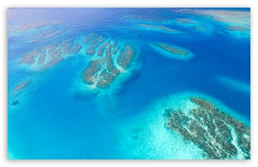 Coral Reef Aerial View ❤ 4K UHD Wallpaper for Wide 16:10 5:3 Widescreen WHXGA WQXGA WUXGA WXGA WGA ; UltraWide 21:9 24:10 ; 4K UHD 16:9 Ultra High Definition 2160p 1440p 1080p 900p 720p ; UHD 16:9 2160p 1440p 1080p 900p 720p ; Standard 4:3 5:4 3:2 Fullscreen UXGA XGA SVGA QSXGA SXGA DVGA HVGA HQVGA ( Apple PowerBook G4 iPhone 4 3G 3GS iPod Touch ) ; Smartphone 16:9 3:2 5:3 2160p 1440p 1080p 900p 720p DVGA HVGA HQVGA ( Apple PowerBook G4 iPhone 4 3G 3GS iPod Touch ) WGA ; Tablet 1:1 ; iPad 1/2/Mini ; Mobile 4:3 5:3 3:2 16:9 5:4 - UXGA XGA SVGA WGA DVGA HVGA HQVGA ( Apple PowerBook G4 iPhone 4 3G 3GS iPod Touch ) 2160p 1440p 1080p 900p 720p QSXGA SXGA ;