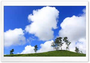 Cotton Clouds HD Wide Wallpaper for Widescreen