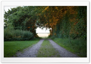 Country Road HD Wide Wallpaper for Widescreen