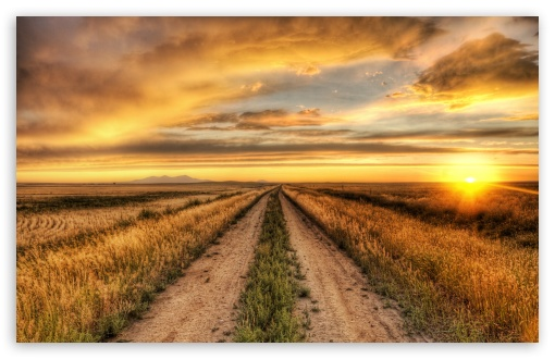 Download Country Road At Sunset HD Wallpaper