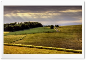 Countryside Field HD Wide Wallpaper for Widescreen