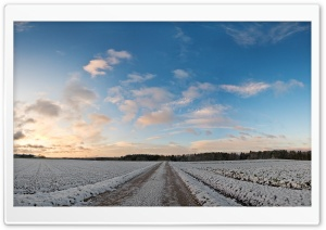 Countryside Field Covered In Snow HD Wide Wallpaper for 4K UHD Widescreen desktop & smartphone