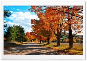 Countryside Road Autumn HD Wide Wallpaper for 4K UHD Widescreen desktop & smartphone