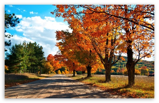 Countryside Road Autumn HD wallpaper for Wide 16:10 5:3 Widescreen WHXGA WQXGA WUXGA WXGA WGA ; HD 16:9 High Definition WQHD QWXGA 1080p 900p 720p QHD nHD ; Standard 4:3 5:4 3:2 Fullscreen UXGA XGA SVGA QSXGA SXGA DVGA HVGA HQVGA devices ( Apple PowerBook G4 iPhone 4 3G 3GS iPod Touch ) ; Tablet 1:1 ; iPad 1/2/Mini ; Mobile 4:3 5:3 3:2 16:9 5:4 - UXGA XGA SVGA WGA DVGA HVGA HQVGA devices ( Apple PowerBook G4 iPhone 4 3G 3GS iPod Touch ) WQHD QWXGA 1080p 900p 720p QHD nHD QSXGA SXGA ;