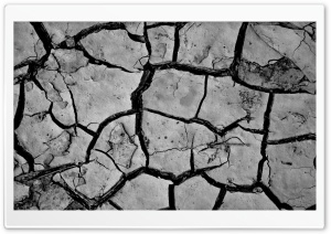 Cracked Mud HD Wide Wallpaper for Widescreen