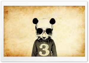 Crazy Panda HD Wide Wallpaper for Widescreen