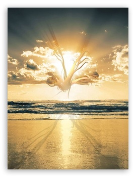 Creative Beach ❤ 4K UHD Wallpaper for Mobile 4:3 5:3 3:2 - UXGA XGA SVGA WGA DVGA HVGA HQVGA ( Apple PowerBook G4 iPhone 4 3G 3GS iPod Touch ) ;