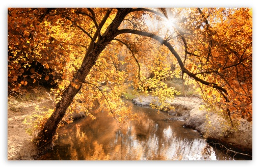 Creek, Autumn HD wallpaper for Wide 16:10 5:3 Widescreen WHXGA WQXGA WUXGA WXGA WGA ; HD 16:9 High Definition WQHD QWXGA 1080p 900p 720p QHD nHD ; UHD 16:9 WQHD QWXGA 1080p 900p 720p QHD nHD ; Standard 4:3 5:4 3:2 Fullscreen UXGA XGA SVGA QSXGA SXGA DVGA HVGA HQVGA devices ( Apple PowerBook G4 iPhone 4 3G 3GS iPod Touch ) ; Tablet 1:1 ; iPad 1/2/Mini ; Mobile 4:3 5:3 3:2 16:9 5:4 - UXGA XGA SVGA WGA DVGA HVGA HQVGA devices ( Apple PowerBook G4 iPhone 4 3G 3GS iPod Touch ) WQHD QWXGA 1080p 900p 720p QHD nHD QSXGA SXGA ; Dual 16:10 5:3 16:9 5:4 WHXGA WQXGA WUXGA WXGA WGA WQHD QWXGA 1080p 900p 720p QHD nHD QSXGA SXGA ;