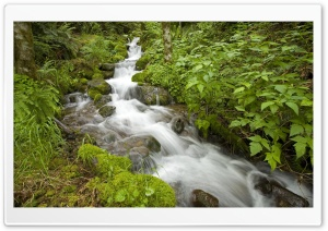 Creek Oregon HD Wide Wallpaper for Widescreen