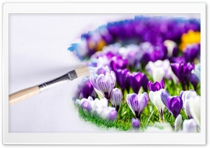 Crocus Painting HD Wide Wallpaper for Widescreen