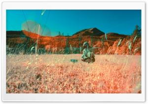 Crouching Infrared Photography Ultra HD Wallpaper for 4K UHD Widescreen desktop, tablet & smartphone
