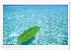Crystal clear water Ultra HD Wallpaper for 4K UHD Widescreen desktop, tablet & smartphone