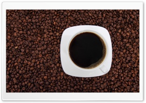 Cup of Coffee Close-up HD Wide Wallpaper for Widescreen
