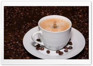 Cup of Coffee Drop Splash Ultra HD Wallpaper for 4K UHD Widescreen desktop, tablet & smartphone